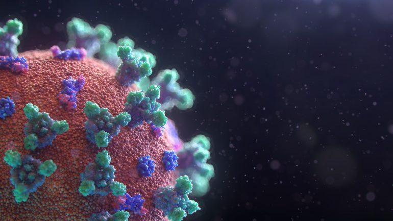 fusion-medical-animation-EAgGqOiDDMg-unsplash